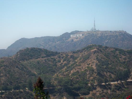 A Day in LA Tours: Hurray!