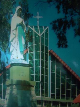 Santuario de la Virgen de Lourdes: Santuario de Lourdes