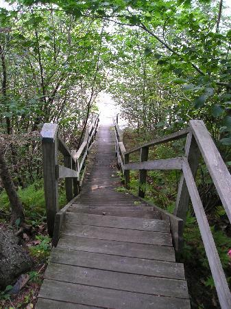 Beloin's on the Maine Coast: Stair down to the private beach