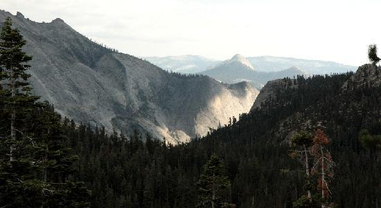 View into Yosemite Valley