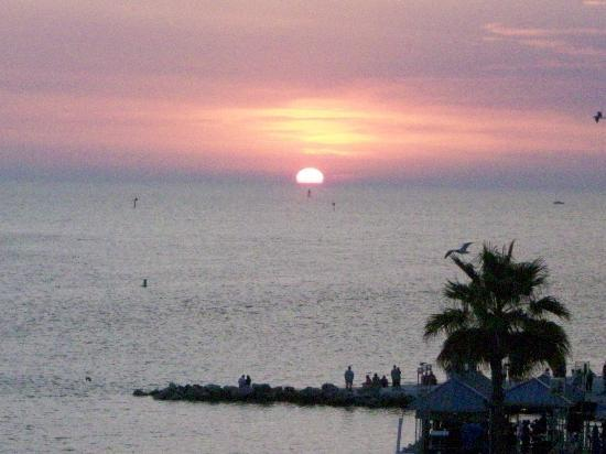 Quality Hotel Clearwater Beach Resort: great sunsets!