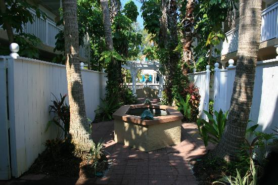 Tortuga Beach Resort: Palm Court