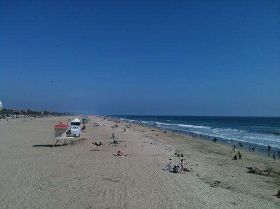 Huntington Dog Beach: a must see