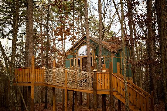The Grand Treehouse Resort: The house