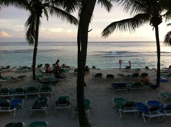 Viva Wyndham Dominicus Beach - An All-Inclusive Resort: the beach