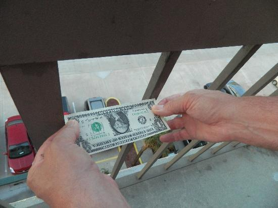 DoubleTree by Hilton Hotel Cocoa Beach Oceanfront: here you can see that it wasn't quite the width of a 1 dollar bill