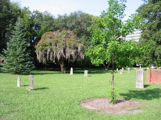Colonial Park Cemetery: More beautiful trees