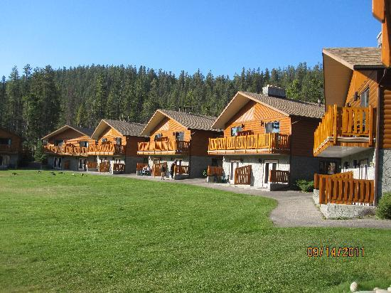 Becker's Roaring River Chalets: Other chalets alongside us