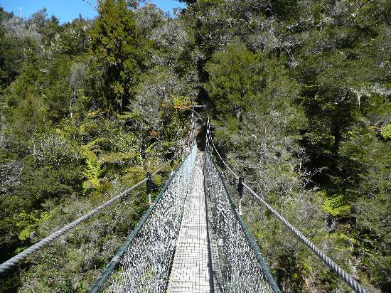 Abel Tasman Sea Shuttle Ltd: The bridge you have to cross on the hike.