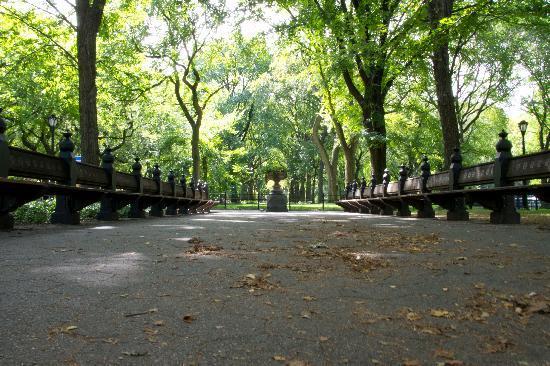 เซ็นทรัลปาร์ค: middle of park