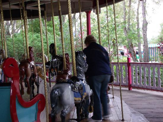 Silverwood Theme Park: Everyone needs to ride the Merry Go Round