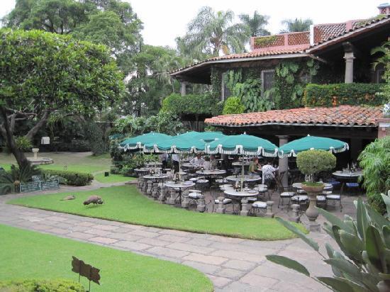 Las Mananitas: Garden area