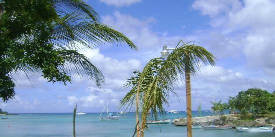 Isla Saona: Bayahibe donde tomamos la lancha de Pepe