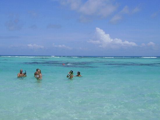 Isla Saona: alli nos íbamos con los chalecos a hacer snorkeling