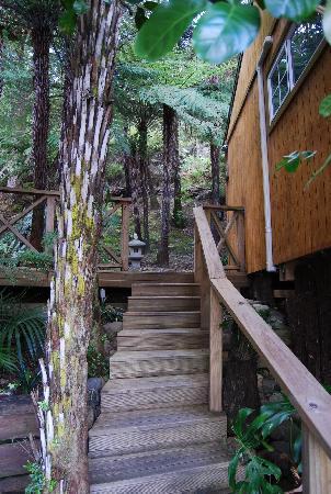 Anchor Lodge Coromandel: Gardens