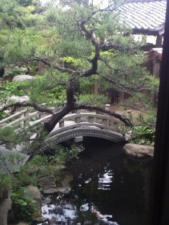 Ryokan Matsunoi: 部屋のすぐ外は池。松もきれい