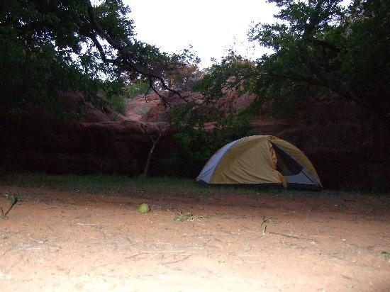 Red Rock Canyon State Park: my tent set up.
