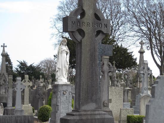 สุสานกลาสเนวิน: Small forest of crosses at Glasnevin