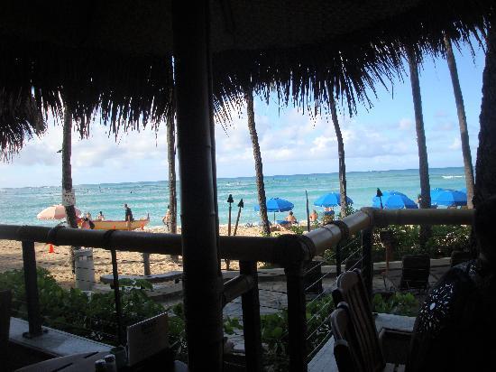 Duke's Waikiki: Nice view