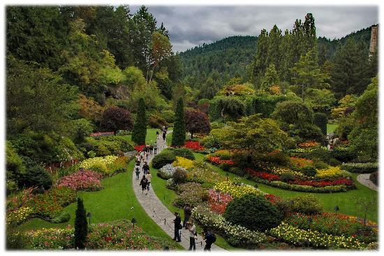 The Butchart Gardens: The panorama
