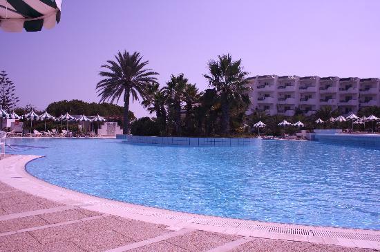 Vincci El Mansour: pool