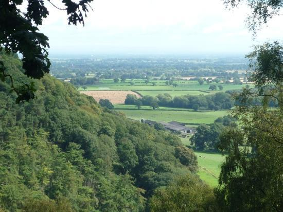 Sandstone Trail: View from The National Trust's 'Bulkeley Woods'