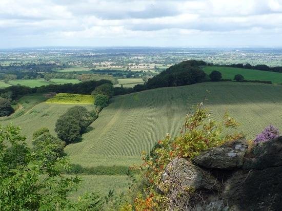 Sandstone Trail: View near Rawhead (highest point of the Trail)