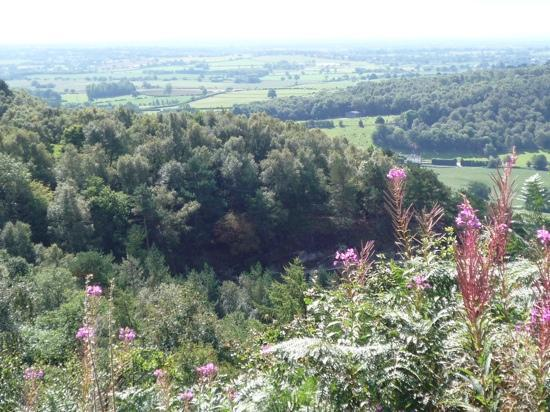Sandstone Trail: View from Rawhead (highest point of the Trail)