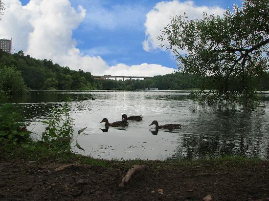 Liljeholmens Stadshotell: Lake
