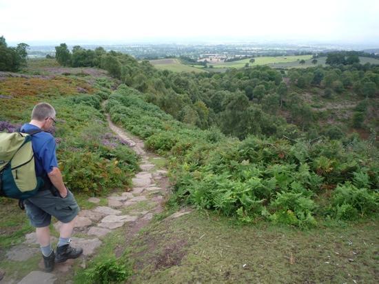 Sandstone Trail: Descending the path near 'Kitty's Stone'