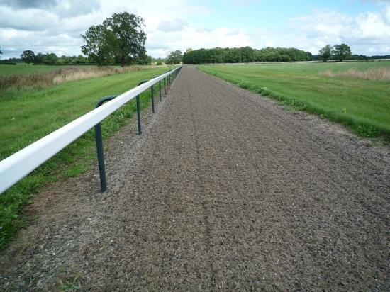 Sandstone Trail: Trail passes thru a horserace training area