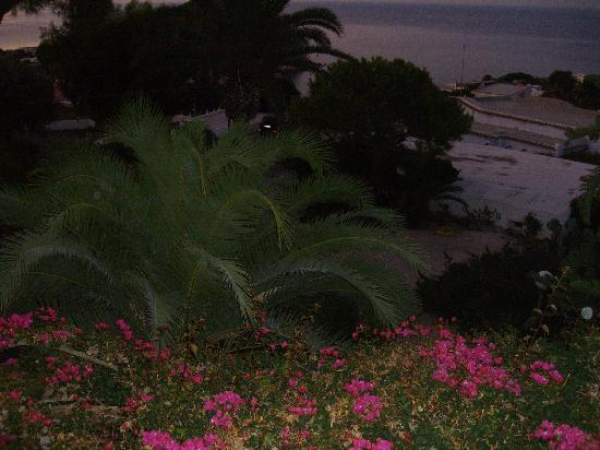 Park Hotel & Terme Romantica: Morgendämmerung ghost orbs