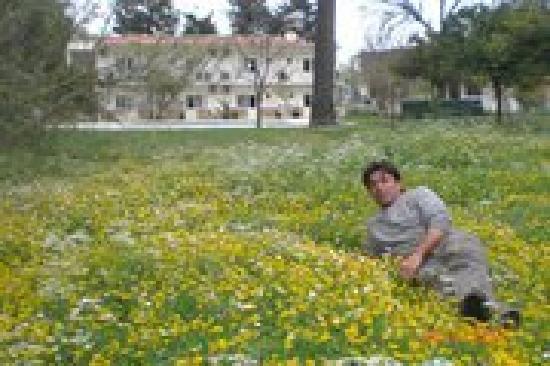 Maviay Hotel Adrasan: Maviay Hotel  garden in spring time