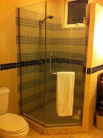 ซอมเมอร์เซต เซริ บูกิต ซีลอน: [2 bedroom apt.] Master bedroom ensuite shower