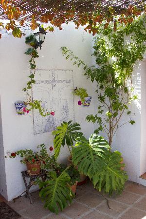Finca Las Encinas : Courtyard