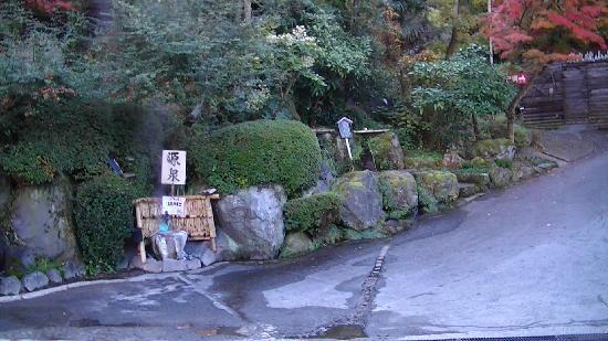 Milky Spa Sun Village: 温泉の源泉