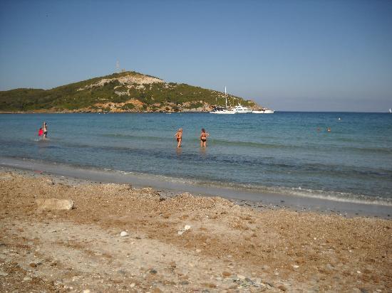 Hotel U Ricordu: la plage a 5minute de l hotel(macinaggio)