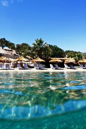 Kalem Adasi Oliviera Resort: Beach Bar