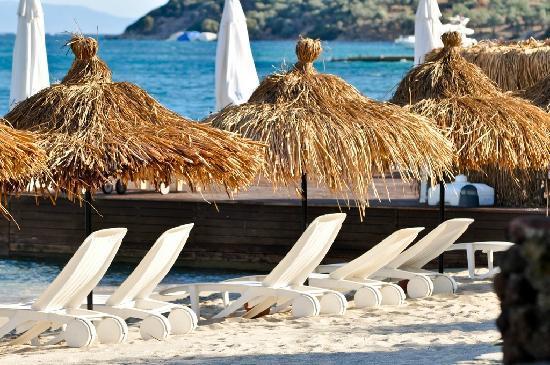 Kalem Adasi Oliviera Resort: Pier 2