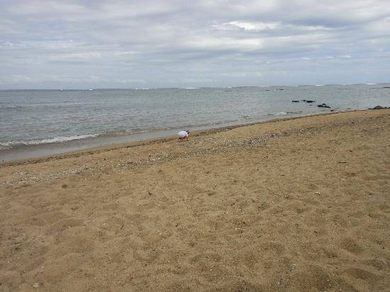 เดอะ นาวิตี รีสอร์ท: The beach