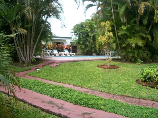 Hotel La Rosa de America: Piscine que l'on voit des chambres