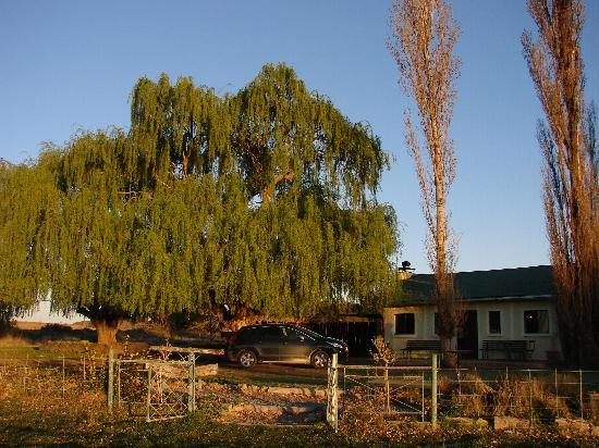 Prior Grange Guest Farm: View of the cottage from the cricket oval