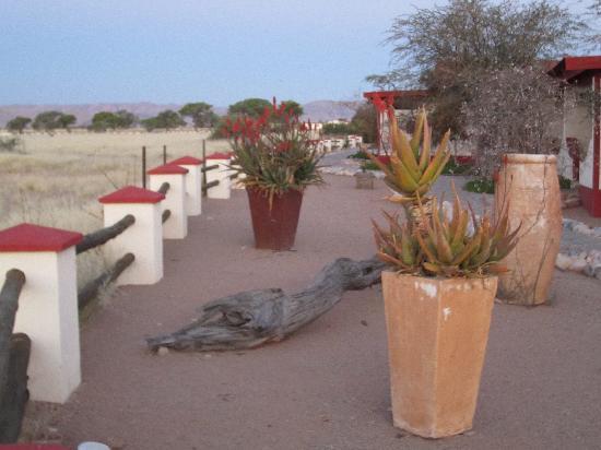 Namib Desert Lodge: giardino del lodge