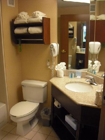 Hampton Inn Manheim Lancaster: Bathroom