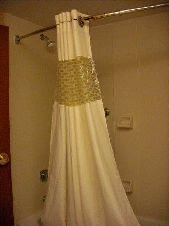 Hampton Inn Manheim Lancaster: Shower
