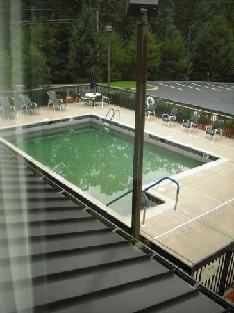 Hampton Inn Manheim Lancaster: Pool