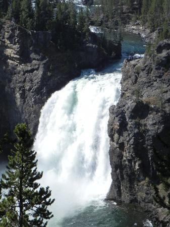 Grand Canyon of the Yellowstone: Upper Falls