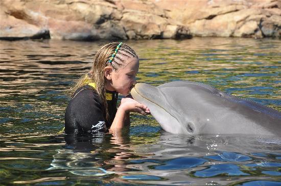 ดิสคัฟเวอรี โคฟ: First time kissing a boy!