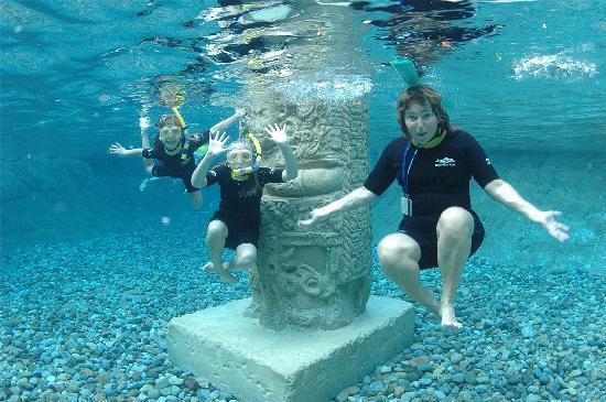 ดิสคัฟเวอรี โคฟ: Underwater fun!