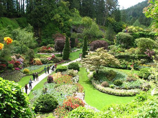 The Butchart Gardens: vue du jardin